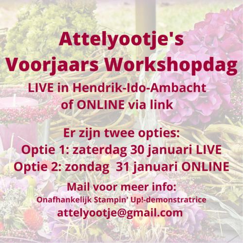 Aanmelding Attelyootje's Voorjaars Workshopdag (live / online)